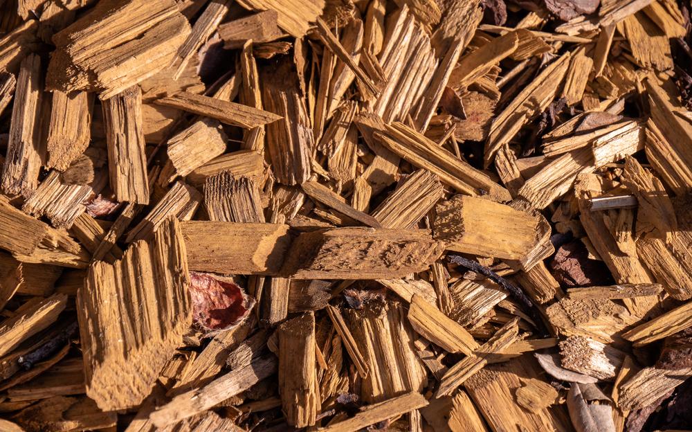 bois déchiqueté